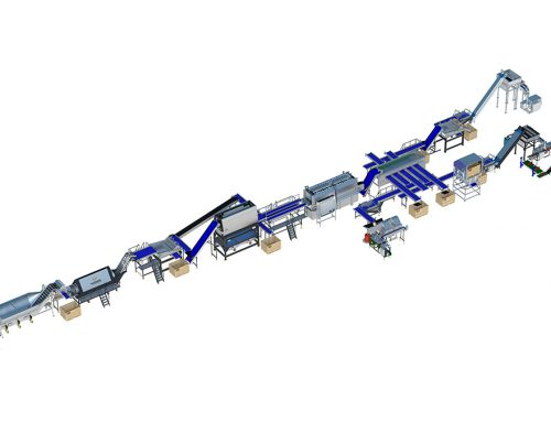 Carrot processing line 500 series