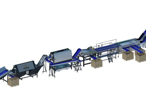 Carrot processing line 450 series (1)