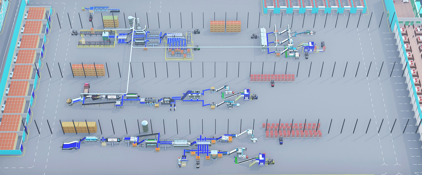 processing area of a multi product distribution centre