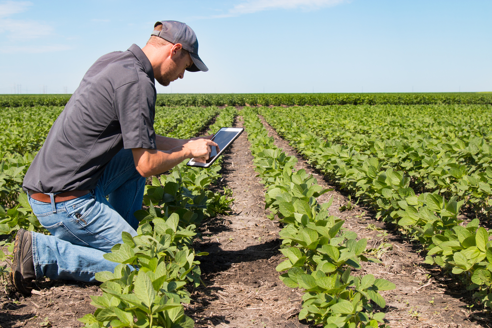 farming looks at his data