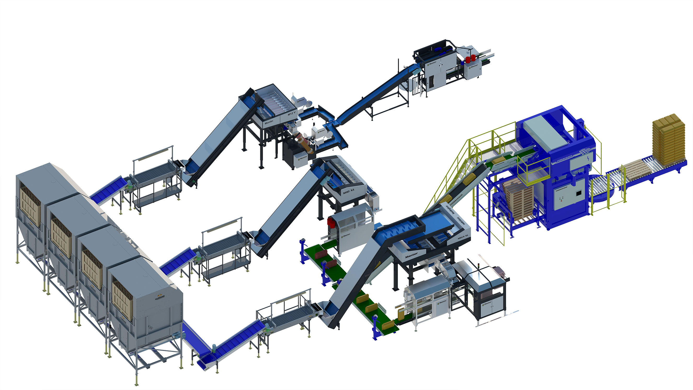 onion packaging line