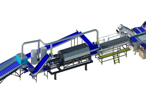 Onion processing line A3 series (1)