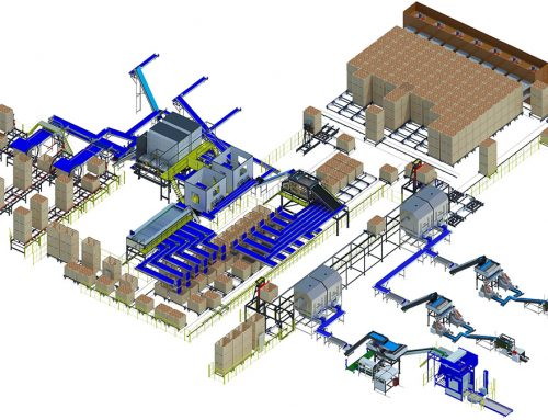 Onion processing line triple A3 series (1)